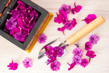 Trowel and rose petals on a wooden table