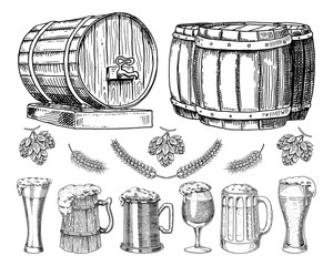 wine or rum, beer classical wooden barrels for rural landscape. Barley and wheat, malt and hops. engraved in ink hand drawn in old sketch and vintage style for web or pub menu. design of oktoberfest.