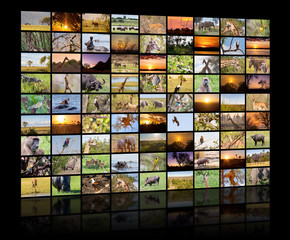 A variety of images of Botswana as a big image wall, documentary channel