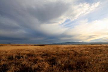Poster Gray rural landscape
