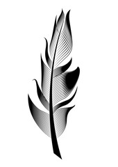 Vector stylized bird feather. Linear object for decoration.