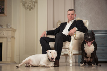 Man seating in armchair. Dogs: black pit bull or stafforshire terrier, white bull terrier seatting in the legs of man