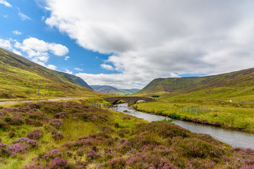 Scottish countryside in summer