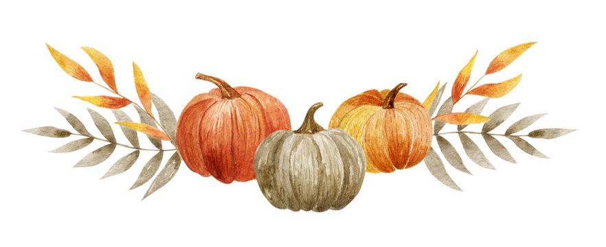 Pumpkin set on the white background. Watercolor hand-draun illustration