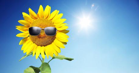 Sonnenblume mit Sonnenbrille