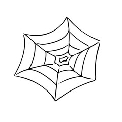 A spider web (Pesaro, Italy)