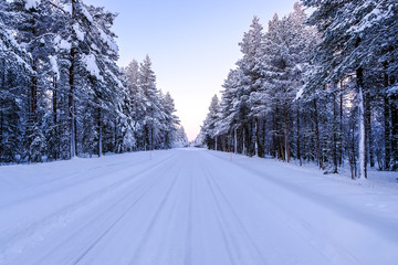 Road through winter snowy forest beyond polar circle in Lapland.