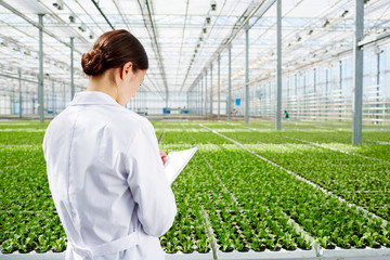 Researcher making notes in notepad during study of vegetation development