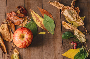 Frame of bright autumn leaves on the boards and red apple
