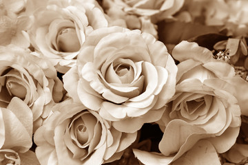 Vintage roses flowers.