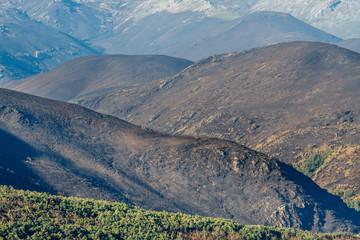 Montes quemados en la Sierra de la Cabrera, León, España.