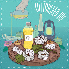 Plastic Bottle of Cotton seed oil and Gossypium or cotton plant. Hand filling ancient oil lamp. Natural vegetable oil used as fuel for oil lamp