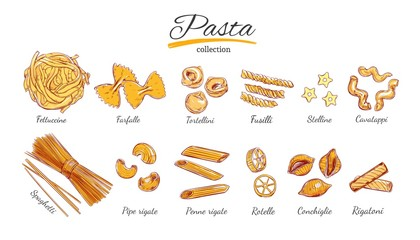 Italian Pasta set. Different types of pasta. Vector hand drawn illustration. Isolated objects on white. Colorful.