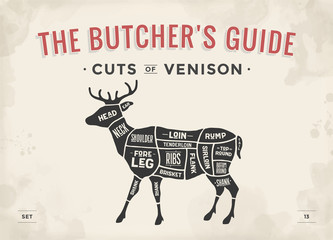 Cut of meat set. Poster Butcher diagram, scheme - Venison. Vintage typographic hand-drawn deer silhouette for butcher shop, restaurant menu, graphic design. Meat theme. Vector Illustration