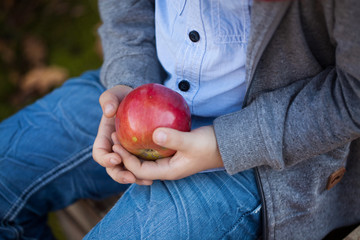 An apple in the hands of a child