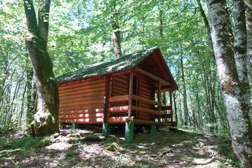 wild cabin