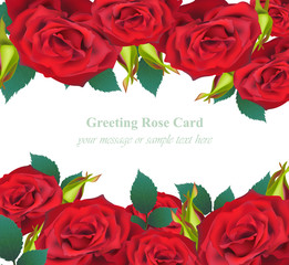 Red Roses flower Invitation card Vector. Delicate floral realistic illustration
