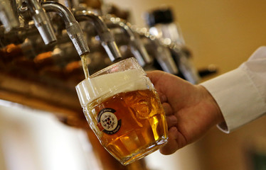 Bartender drafts a glass of beer from a tap in a micro-brewery owned by Litomerice bishopric in Litomerice