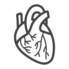 Human heart line icon, medicine and healthcare, human organ sign vector graphics, a linear pattern on a white background, eps 10.