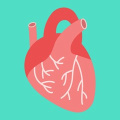 Human heart flat icon, medicine and healthcare, human organ sign vector graphics, a colorful solid pattern on a cyan background, eps 10.