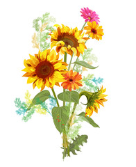 Bouquet autumn flowers: yellow sunflowers, orange gerbera daisy flower, small green twigs of Asparagus on white background. Digital draw, illustration in watercolor style for design, vector