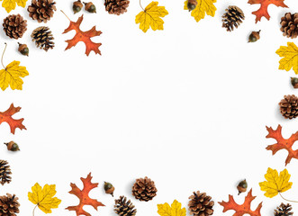 Autumn mockup scene. Creative fall composition made of colorful maple, oak leaves, pine cones and acorns, flat lay. Isolated natural objects on the white background.Space for your text, top view.
