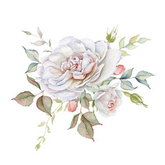 Hand drawn watercolor delicate white roses bouquet