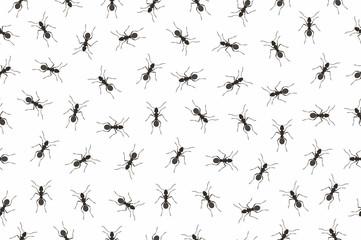 Seamless pattern ants