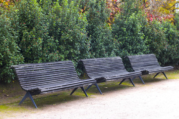 old wooden bench in the city park