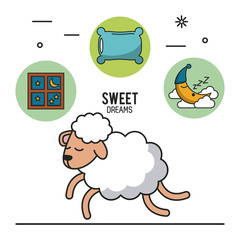 Sweet dreams and good sleep infographic over white background vector illustration graphic design