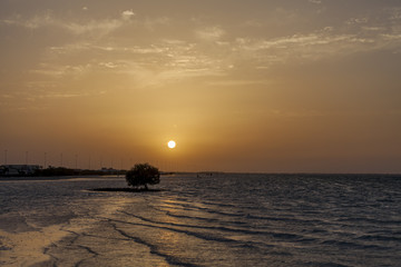 Sunset in the beach in Abu Dhabi