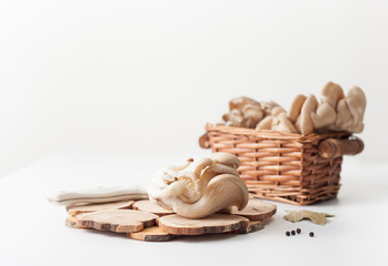 Raw oyster mushrooms on white background