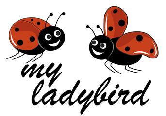 my ladybird