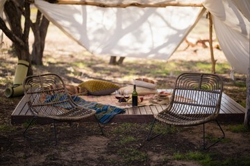 Picnic accessories in forest