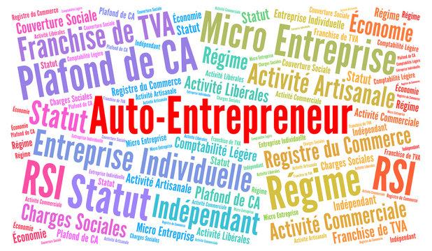Auto entrepreneur nuage de mots