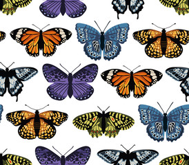 Vector seamless pattern with bright butterflies. Hand drawn texture design