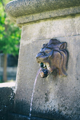 Ancient lion head water fountain at Corsica, France. Sculpture of lion head fountain.