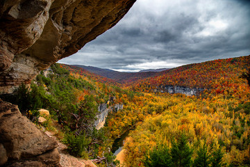 Big Bluff Autumn Color