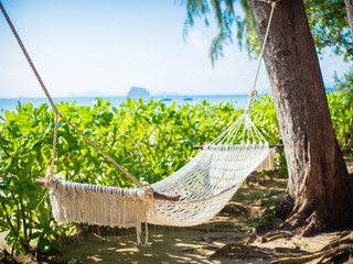 Empty hammock on the tropical beach with trees and beautiful sea view background.