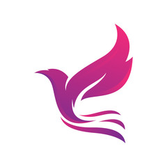 beautiful dove pigeon bird logo