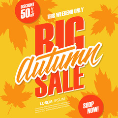 Big Autumn Sale special offer banner with hand lettering for seasonal shopping. Vector illustration.
