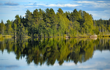 forest and clouds and reflection in the lake