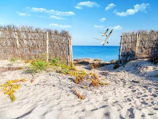 Fototapete - Ostsee Strand