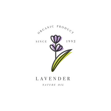 Vector set of packaging design template and emblem - beauty and cosmetic oil - lavender
