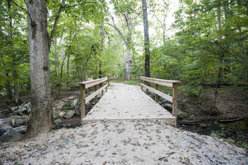 A bridge crosses over a stream on a trail in a forest park.