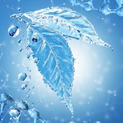 Leaf made of water splash on blue background