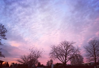 purple and pink sunset sky