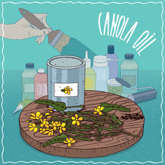 Steel Paint Can of Canola oil and flowers and seeds of Canola plant. Hand holding paint brush. Natural vegetable oil used for paint manufacture