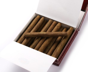 Cigarillos without filter in box with tobacco isolated over white background