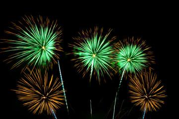 Fireworks, Fireworks light up the sky,New Year celebration fireworks